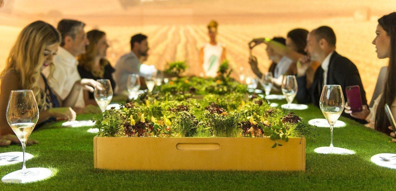 Detalle de la cena de Sublimotion con ambiente de campo