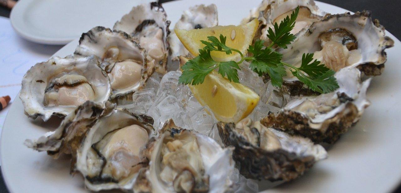 Las ostras, un alimento de lujo en el plato con hielo y limón