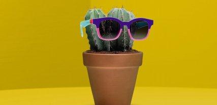 Swatch apuesta por las gafas de sol