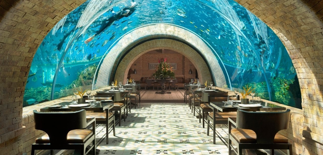 Restaurante Koral, la mejor experiencia de lujo de 2020